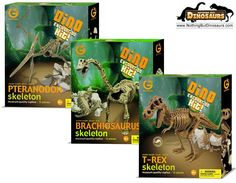 GeoWorld T-Rex, Brachiosaurus And Pteranodon Dinosaur Skeleton Excavation Dig Kit Bundle | Nothing But Dinosaurs