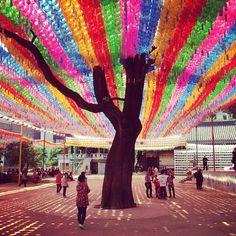 "@Graham Budd's photo: ""The tree of light! Lantern festival, Buddist Temple Insadong, Seoul. #korea #seoul #한국 #tourist #visitkorea #religion #Buddhism #twitter"""
