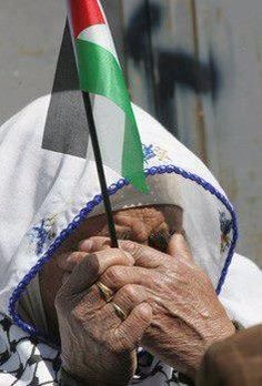 Together hand in hand to liberate Palestine from the Jews dogs - the whole world against Israel