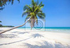 Fotomural Playa tropical con palmeras de coco
