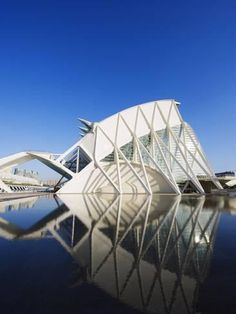 Photographic Print: Science Museum, Architect Santiago Calatrava, City of Arts and Sciences, Valencia, Spain, Europe by Christian Kober : 24x18in