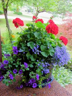 Front porch flowers by rkramer62 on Flickr (cc)..