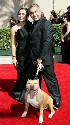 Cesar Millan and guest arrive with Pit-bull Daddy - love that Daddy got an invite too! He was a legend!!