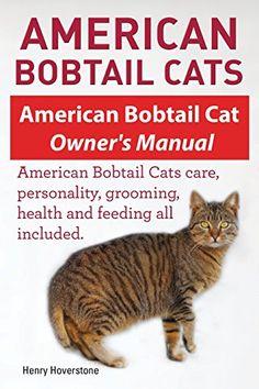 American Bobtail Cat Breeders Near Me