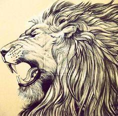 Lion head: