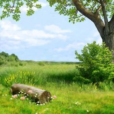 Peace and Quiet~~J Kids Background, Studio Background Images, Background Pictures, 3d Fantasy, Fantasy Landscape, Landscape Art, Episode Backgrounds, Photo Backgrounds, Wallpaper Backgrounds