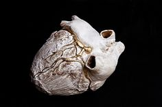 With a Heavy Heart... Anatomical sculpture