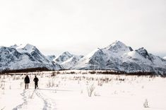 Snowshoeing in open snow fields at Lyngen North. Glass Igloo Hotel, Stunning View, Winter Holidays, Alps, Arctic, Norway, Fields, Northern Lights, Snow