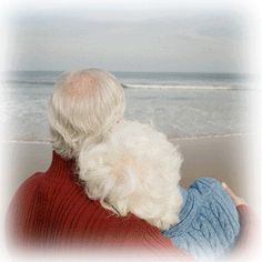 Elderly love