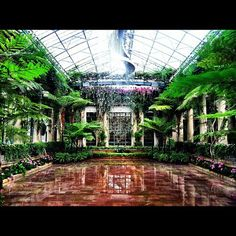 I found some pictures of HEAVEN!! Longwood Gardens in PA- absolutely beautiful!