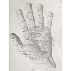 Palm Reading Print of Illustration