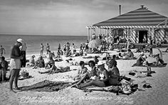 Beach Photo of the Day The Palm Pavilion, Clearwater Beach, Florida.