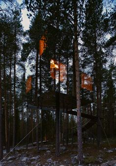 """""""The Mirrorcube"""" by Tham & Videgård at Treehotel – Harads, Sweden  (Sweden's Treehotel is inspired by the philosophic film The Tree Lover)"""