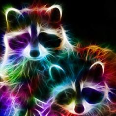 Fractal Animals - Racoons Just click on gif see motion