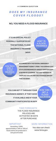 Insurance JPG
