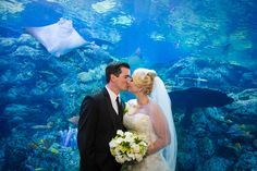 Aquarium Wedding by