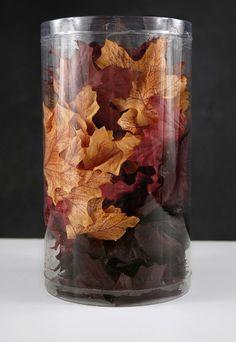 Autumn Leaves Silk   100 Leaves