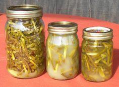 Milkweed Diaries: Brine Pickled Garlic Scapes