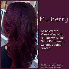 Vixen Warpaint Mulberry Bush
