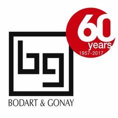 Cheminée Gaz ou Bois Bodart & Gonay dans le Rhône (69) ou la Saône et Loire (71)
