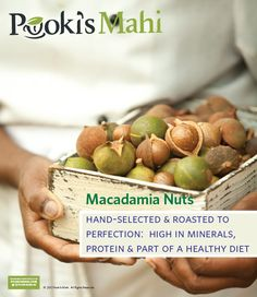 Pooki's Mahi Prunes Macadamia Nut Offering and Kicks Off Private Beta To Finalize New Products For Snacks Product Line