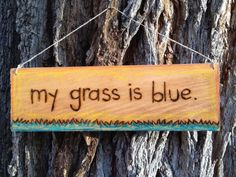 my grass is blue