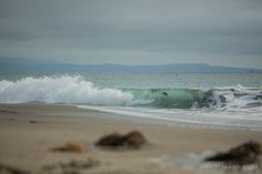 Team Wiking | Moss Landing State Beach / Moss Landing, California | http://www.teamwiking.com