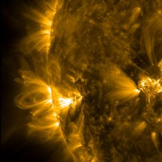 An active region of the sun just rotating into the view of NASA's Solar Dynamics Observatory gives a profile view of coronal loops over abou...