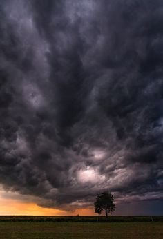 """Storm -- Man has dominated man to his injury. He has caused a hole in the ozone layer, causing the Sun to harm us (causing cancer), he has caused the planet to heat up from emissions coming from planes, aerosol cans, air conditioners, and hundreds of other things, and they are predicting disaster in a year of two if the planet continues to heat up. Jehovah says he will """"bring to RUIN those RUINING the earth."""" Revelation 11:18"""