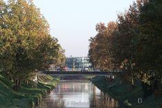 Een kleine foto-impressie met herfstkleuren in Klazienaveen. Want het was vandaag een prachtige dag na de mist van de afgelopen dagen.