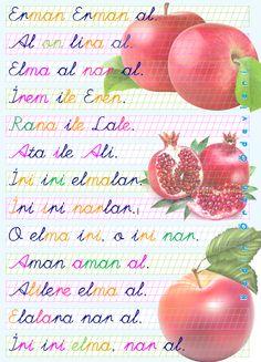 ilkokul ödevleri: 1. sınıf metin elma ile nar