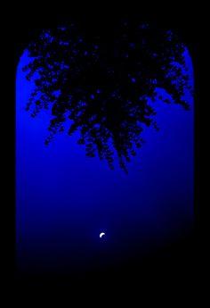 Moon on the rise Image Bleu, Bleu Indigo, Everything Is Blue, Beautiful Moon, Himmelblau, Blue Wallpapers, Blue Aesthetic, Blue Walls, Something Blue