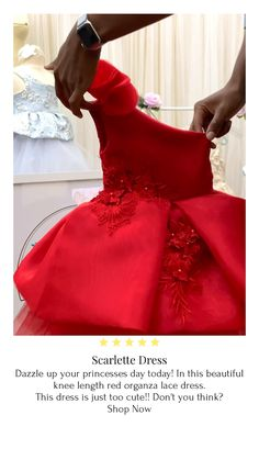 The Scarlette's dress lace organza red dress. Perfect for the holidays! Source by dearliline dress videos Baby Girl Frocks, Baby Girl Party Dresses, Frocks For Girls, Birthday Dresses, Red Dresses For Kids, Little Girl Dresses, Girls Dresses, Flower Girl Dresses, Dresses Dresses