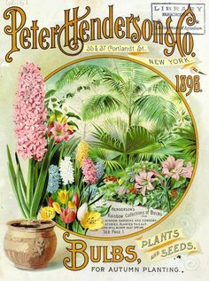 Front cover of Peter Henderson's Autumn Bulb Catalogue 1896 with an illustration of Henderson's 'Rainbow Collections of Bulbs.'