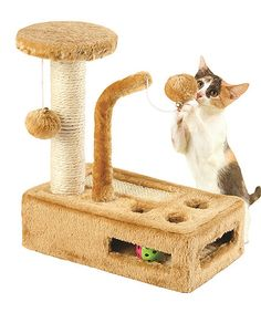 Etna Products Pretty Kitty Complete Play Gym Scratching Post | zulily