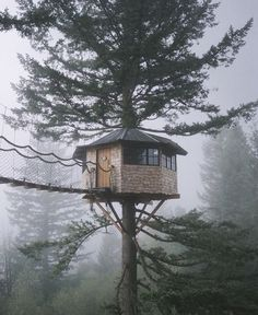 "enjoyoutdoors: ""Who wants a tree house like this?  