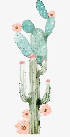 Cactus - Cactus, watercolor cactus, watercolor plants, green png image and clipart Best Picture For Cactus - Cactus Drawing, Cactus Art, Cactus Flower, Paper Cactus, Cactus Decor, Watercolor Plants, Watercolor Paintings, Image Cactus, Art Et Illustration