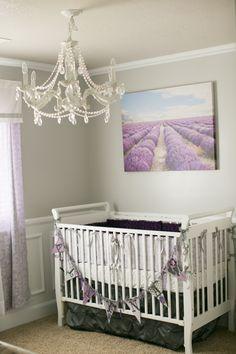 Alayna's French lavender nursery