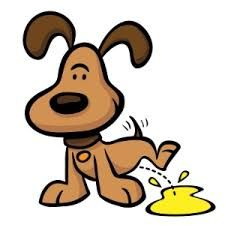 Texas Veterinary Medical Association Texasveterinarymedicalassociat Profile Pinterest