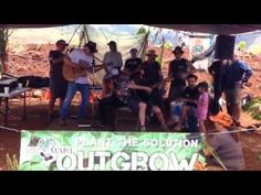 "▶ Neil Young Performing his song ""Monsanto Years""on Maui at OUTGROW MONSANTO, May, 23,2015 - YouTube"