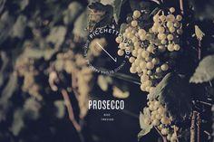Prosecco Picchetto Verde on Behance