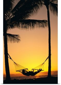 Dana Edmunds Poster Print Wall Art Print entitled Silhouetted Couple Laying In Hammock On Beach At Sunset, None
