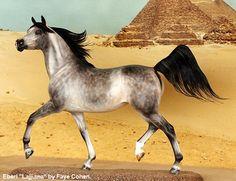 Ansata Custom Model Horses | Equine.com