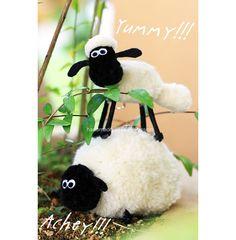 Pom Pom Tutorial – Shaun The Sheep