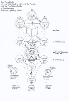 """""""Platonic Solids on the Tree of Life"""" by Jane Adams. Occult Symbols, Occult Art, Rose Croix, Sacred Geometry Symbols, Platonic Solid, Esoteric Art, Spirit Science, Mystique, Book Of Shadows"""