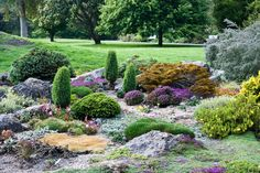 The 15 Best Botanical Gardens In California