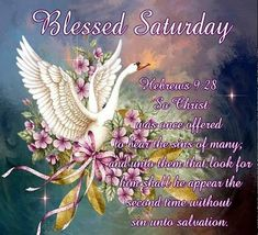 "BLESSED SATURDAY: Hebrews 9:28 (1611 KJV !!!!) "" So Christ was once offered to bear the sins of many; and unto them that look for him shall he appear the second time with out sin unto salvation."" ENJOY YOUR DAY !!!!"