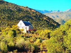 Guest house Oaksrest Vineyards Farm, Ladismith, South Africa - Booking.com
