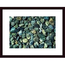 Pebbles Abstract by John K. Nakata Framed Photographic Print