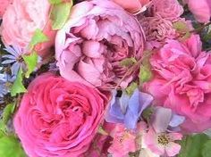 Roses, peonies and sweet peas... I need an English garden...and a gardener...